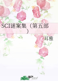 SCI谜案集(第五部)